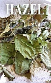 Eko zāļu tēja Lazdu lapas
