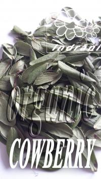 Eko zāļu tēja Brūkleņu lapas